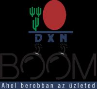 DXN BOOM – A profi start képzés